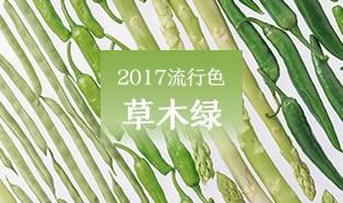 热门专题 2017流行色彩