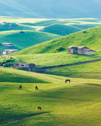 新疆10bet亚洲大全